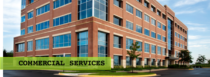 Commercial Pest Management Services