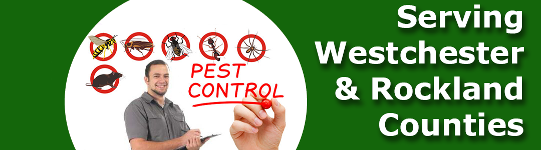 Westex Pest Management westchester